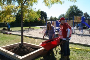 Phase II of this project was the construction of raised beds